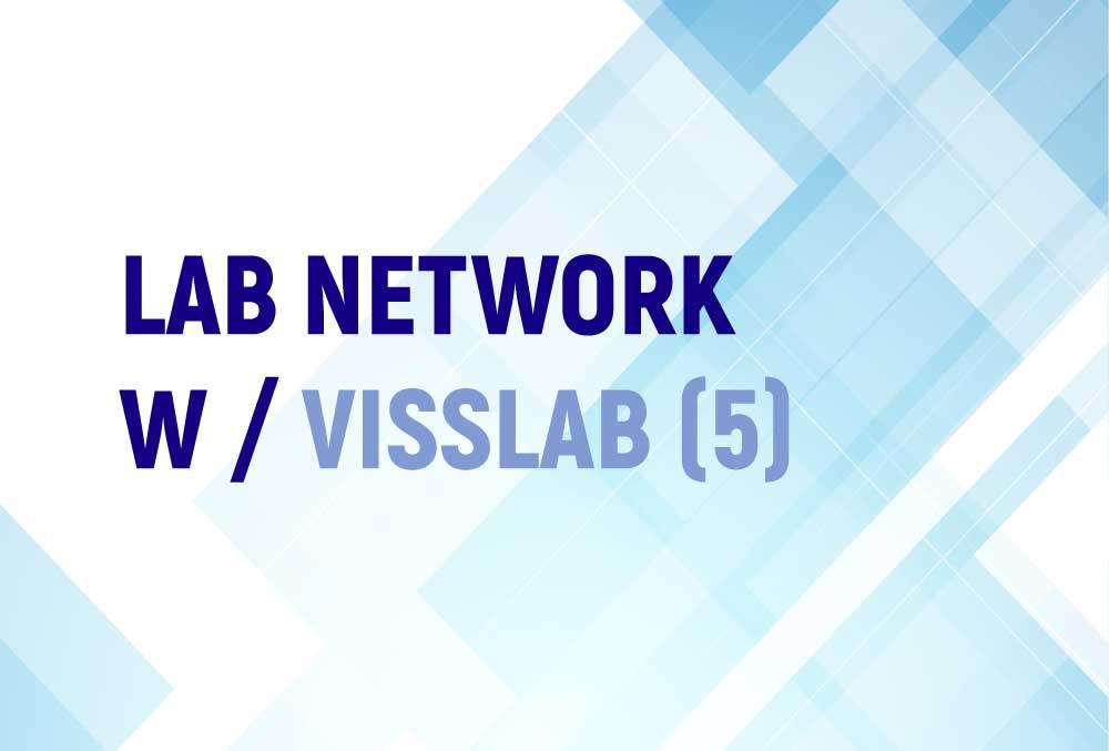 LAB NETWORK W / VISSLAB (5)